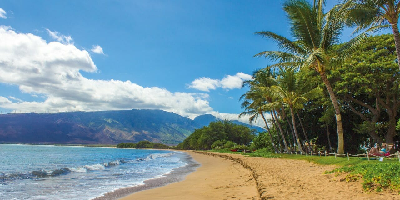 Newly PCSed to Schofield Barracks, MCBH Kaneohe Bay, or Hickam AFB? We've got you covered!