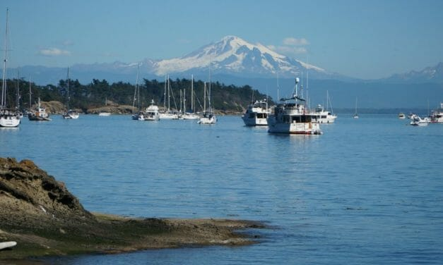 Newly PCSed to Seattle and the Beautiful Puget Sound?
