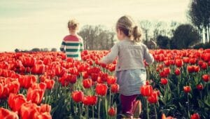 7 Family-Friendly Day Trips around Puget Sound