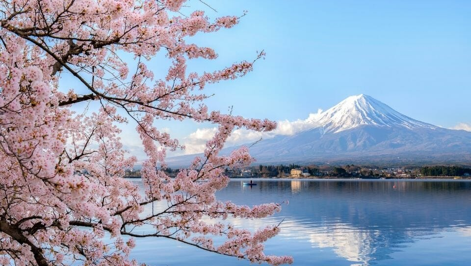 11 Must Reads When PCSing to Japan